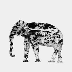 Elephant with no tail art print by Gallerist