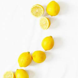 Yellow lemon  art print by Gallerist