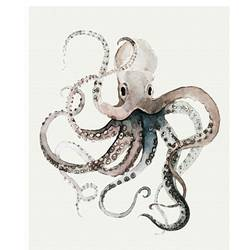 Octopus fish art print by Gallerist