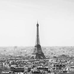 The paris  art print by Gallerist