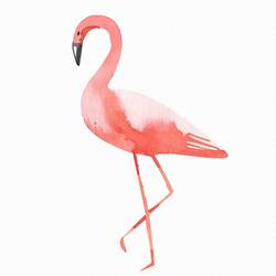 Standing Flamingo art print by Gallerist
