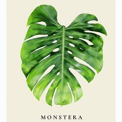 Green leaf  art print by Gallerist