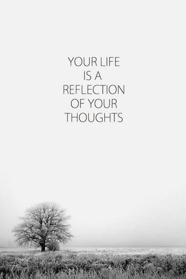 Life of refelection