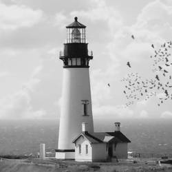White light house with flying bird  art print by Gallerist