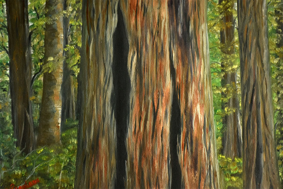 tree closeup, 17 x 12 inch, goutami mishra,nature paintings,paintings for living room,canvas,oil,17x12inch,GAL04651311Nature,environment,Beauty,scenery,greenery