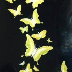 fluttering gold, 24 x 36 inch, j.k  chhatwal,figurative paintings,nature paintings,canvas,acrylic color,24x36inch,GAL0537813120Nature,environment,Beauty,scenery,greenery