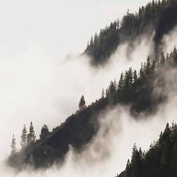 Mountain with fog  art print by Gallerist