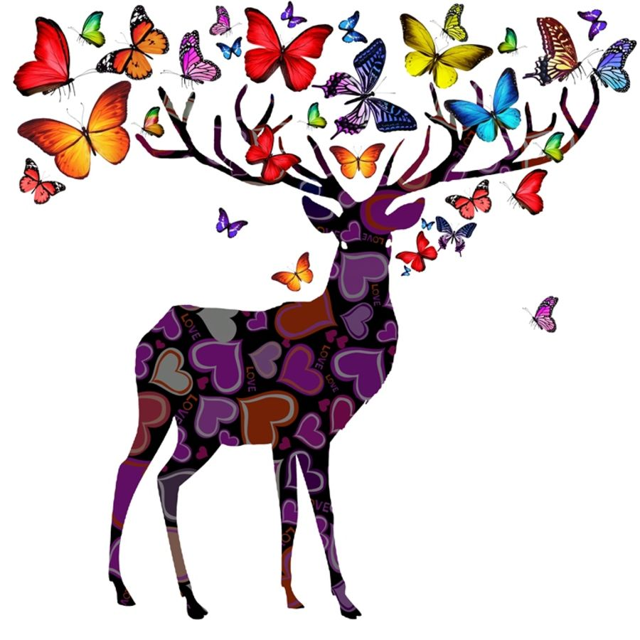 Deer with beautiful butterfly
