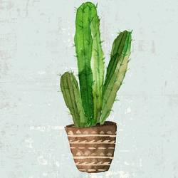 The green cactus with  art print by Gallerist