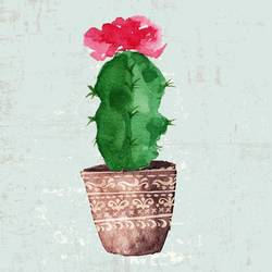 Cactus with glossy red flower art print by Gallerist