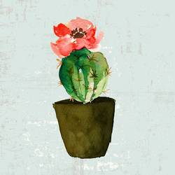Glossy round cactus with pink flower  art print by Gallerist