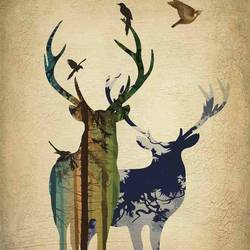 Tow deer  art print by Gallerist