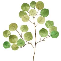 Round green leaf  art print by Gallerist