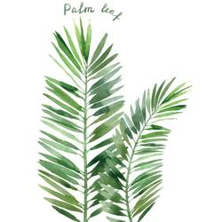 The palm leaf  art print by Gallerist