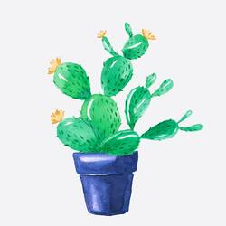 Cactus with small orange flower  art print by Gallerist