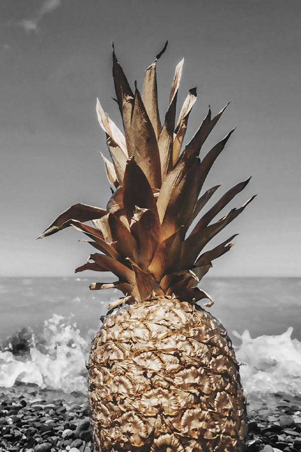 Pineapple on the sea side
