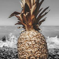 Pineapple on the sea side art print by Gallerist