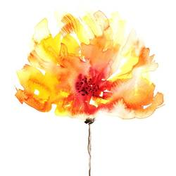 Orange flower  art print by Gallerist