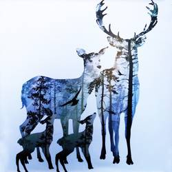 Deer  family  art print by Gallerist