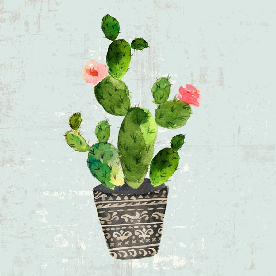 Green cactus with tow red flower