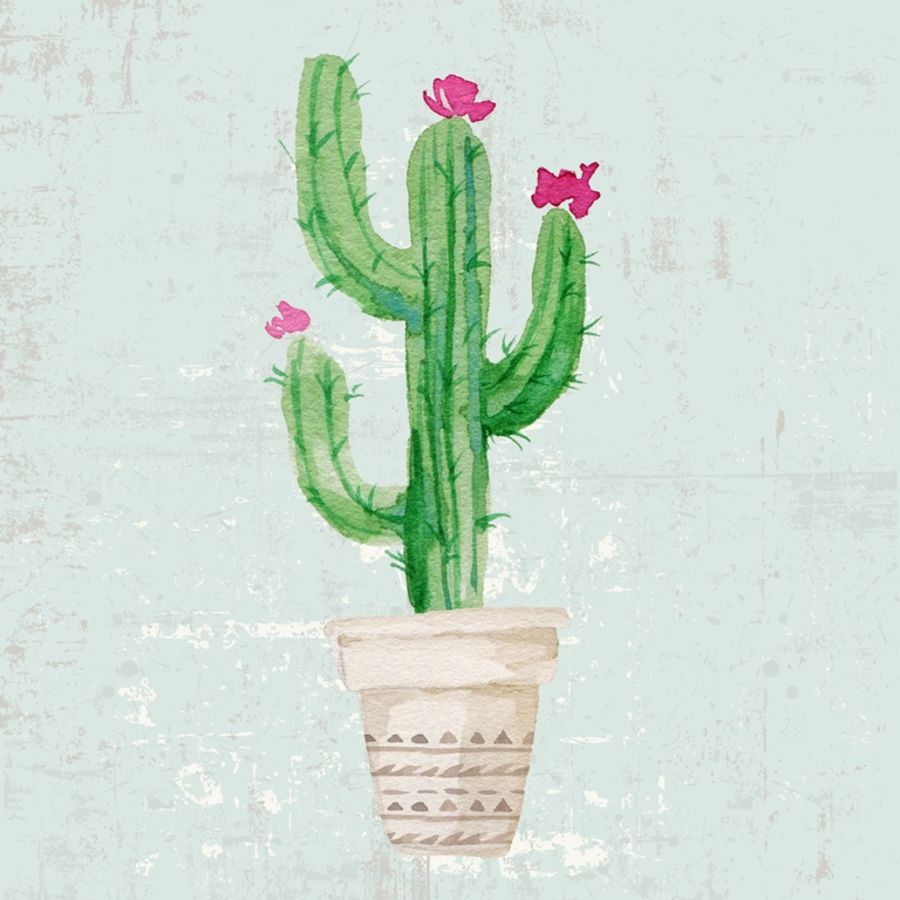 Glossy pink flower with green cactus