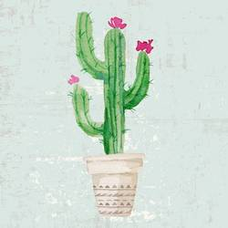 Glossy pink flower with green cactus  art print by Gallerist