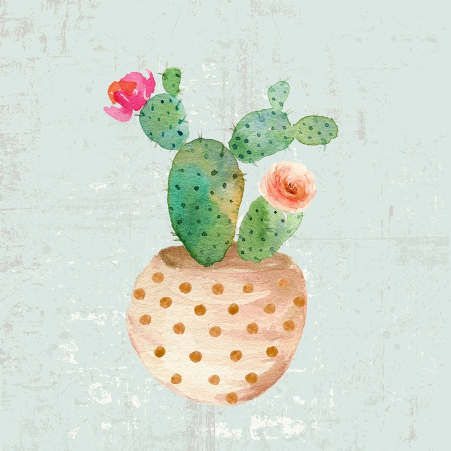 Green cactus with pink and white flower