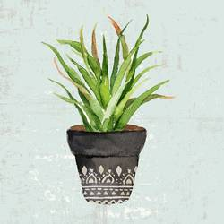 Long  aloe Vera  green leaf  art print by Gallerist