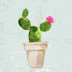 Green cactus with small pink flower  art print by Gallerist
