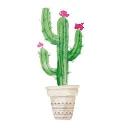 Cactus having flower on top  art print by Gallerist