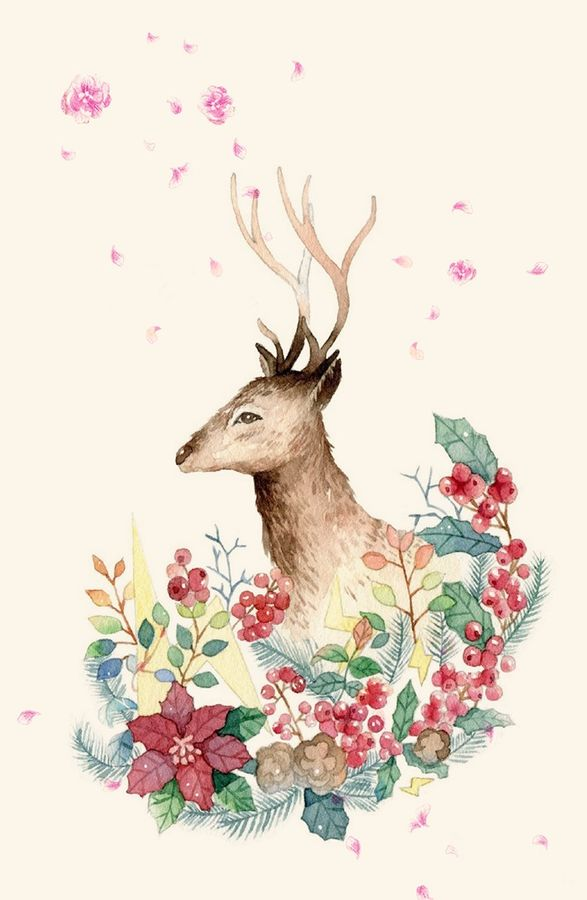 Deer with small horn