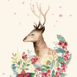 Deer with small horn  art print by Gallerist