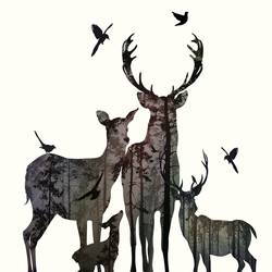 Family of lovely deer  art print by Gallerist