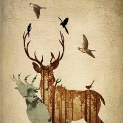 Bird playing with deer  art print by Gallerist