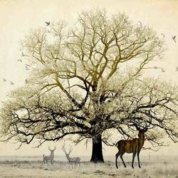 Big tree with deer  art print by Gallerist