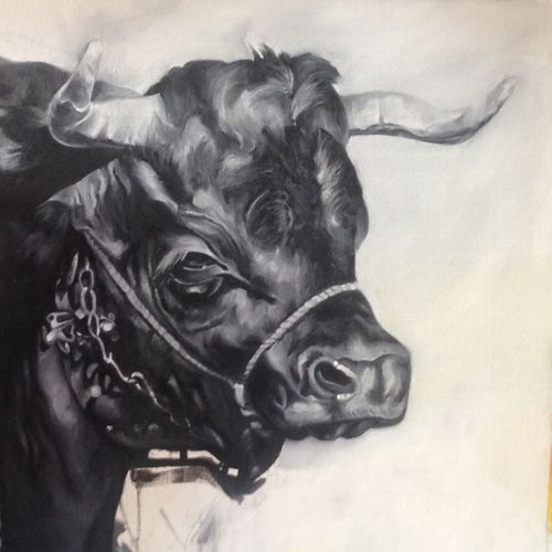 cow/bull realistic, 20 x 20 inch, sanjana gothi,paintings,photorealism paintings,realism paintings,animal paintings,realistic paintings,paintings for dining room,paintings for living room,paintings for bedroom,paintings for office,paintings for bathroom,paintings for kids room,paintings for hotel,paintings for kitchen,paintings for school,paintings for hospital,paintings for dining room,paintings for living room,paintings for bedroom,paintings for office,paintings for bathroom,paintings for kids room,paintings for hotel,paintings for kitchen,paintings for school,paintings for hospital,canvas,oil,20x20inch,GAL0466613556