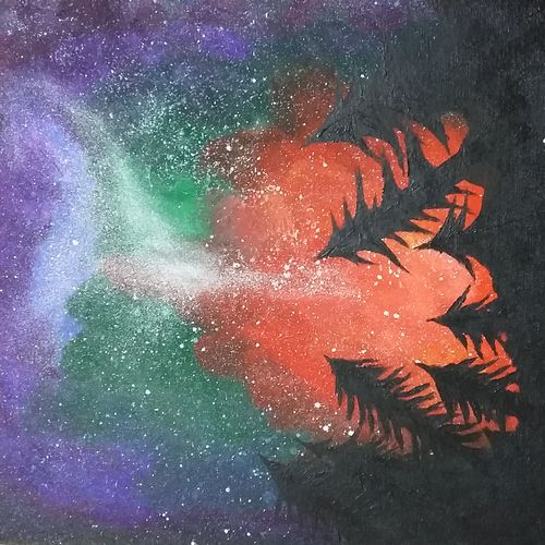 cosmos night sky, 16 x 20 inch, christopher raymond,paintings,nature paintings,canvas,acrylic color,16x20inch,GAL0573513713Nature,environment,Beauty,scenery,greenery