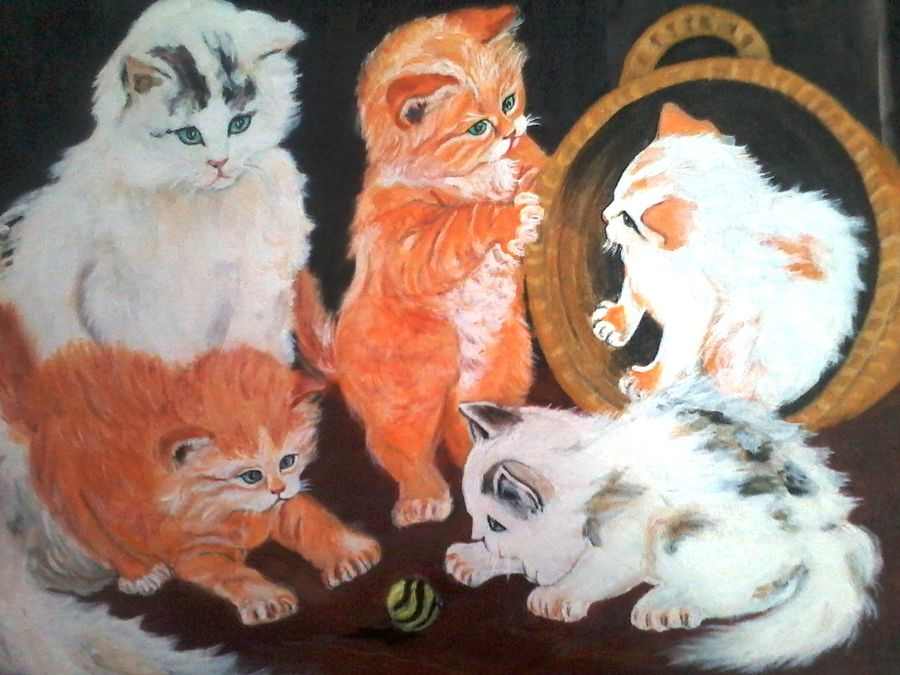 beautiful cats, 20 x 16 inch, vimala  renjith,landscape paintings,paintings for living room,canvas,acrylic color,20x16inch,GAL05611375