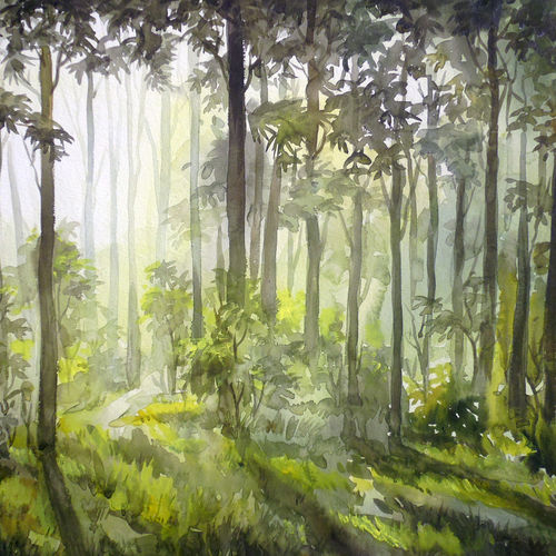 morning forest light, 31 x 22 inch, samiran sarkar,paintings,landscape paintings,nature paintings,realism paintings,contemporary paintings,realistic paintings,paintings for dining room,paintings for living room,paintings for bedroom,paintings for office,paintings for hotel,paintings for school,paintings for hospital,handmade paper,watercolor,31x22inch,GAL0574913851Nature,environment,Beauty,scenery,greenery