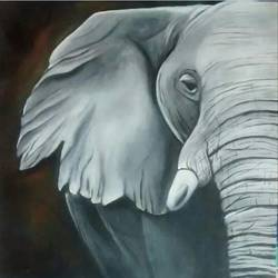 the elephant, 18 x 18 inch, smriti sharma,paintings,wildlife paintings,paintings for dining room,paintings for living room,paintings for bedroom,paintings for office,paintings for kids room,paintings for hotel,paintings for dining room,paintings for living room,paintings for bedroom,paintings for office,paintings for kids room,paintings for hotel,canvas,oil,18x18inch,GAL0137813953
