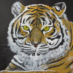 tiger, 14 x 11 inch, ranjita panda,paintings for dining room,paintings for living room,paintings for bedroom,paintings for office,paintings for kids room,paintings for school,animal paintings,thick paper,poster color,14x11inch,GAL0583914018