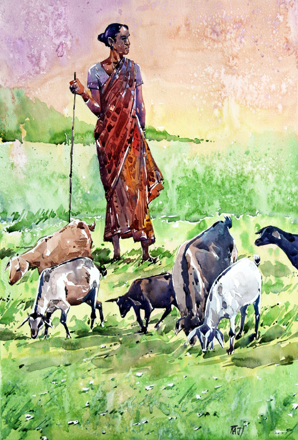 lady with her goats, 15 x 21 inch, raji p,paintings,wildlife paintings,figurative paintings,landscape paintings,nature paintings,animal paintings,paintings for dining room,paintings for living room,paintings for office,paintings for kids room,paintings for hotel,paintings for school,paintings for hospital,canson paper,watercolor,15x21inch,GAL059014077Nature,environment,Beauty,scenery,greenery