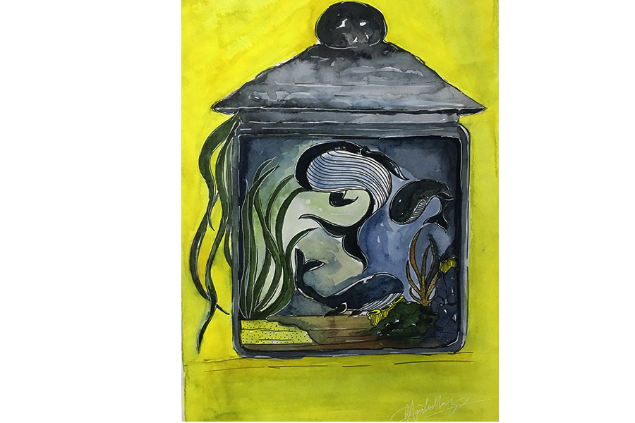 oceana, 8 x 12 inch, anisha mary,paintings,nature paintings,animal paintings,drawing paper,watercolor,8x12inch,GAL0603714258Nature,environment,Beauty,scenery,greenery