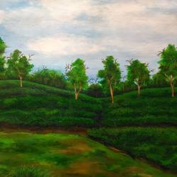 tea garden of assam 2, 23 x 17 inch, sreya gupta,paintings,landscape paintings,paintings for dining room,paintings for living room,paintings for bedroom,paintings for office,paintings for bathroom,paintings for hotel,paintings for kitchen,paintings for school,paintings for hospital,canvas,acrylic color,23x17inch,GAL025914350