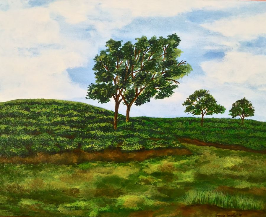 tea garden of assam 3, 18 x 14 inch, sreya gupta,paintings,landscape paintings,paintings for dining room,paintings for living room,paintings for bedroom,paintings for office,paintings for bathroom,paintings for kids room,paintings for hotel,paintings for kitchen,paintings for school,paintings for hospital,canvas board,acrylic color,18x14inch,GAL025914352