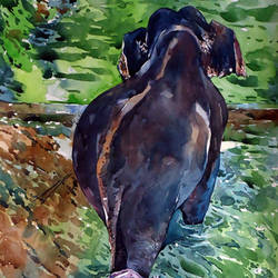 elephant bath, 21 x 15 inch, raji p,landscape paintings,paintings for living room,fabriano sheet,watercolor,21x15inch,GAL05901449