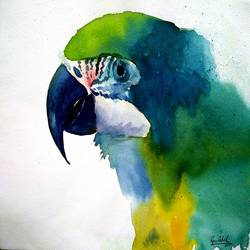 blue & yellow macaw, 15 x 11 inch, ravi patel,paintings,wildlife paintings,animal paintings,paintings for dining room,paintings for living room,paintings for bedroom,paintings for office,paintings for hotel,paintings for school,paintings for hospital,fabriano sheet,watercolor,15x11inch,GAL0578914515
