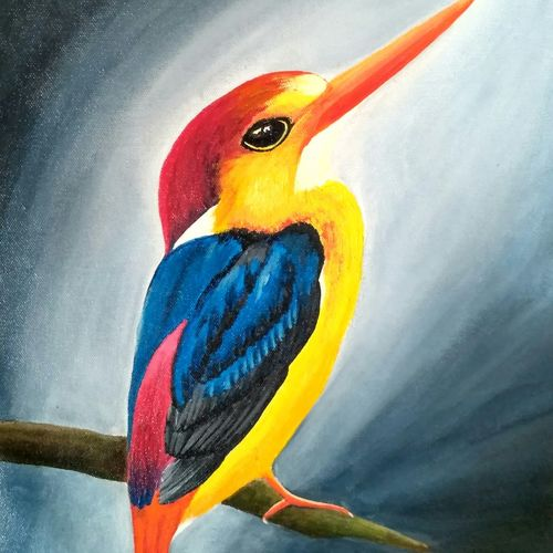 the  oriental dwarf kingfisher, 12 x 16 inch, pranita a,paintings,wildlife paintings,nature paintings,art deco paintings,animal paintings,paintings for dining room,paintings for living room,paintings for bedroom,paintings for office,paintings for kids room,paintings for hotel,paintings for kitchen,paintings for school,paintings for hospital,canvas,acrylic color,12x16inch,GAL0623214575,bird,Kingfisher bird,Kingfisher,colorful