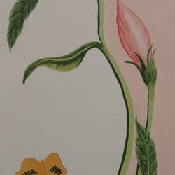 delicate darling, 24 x 30 inch, j.k  chhatwal,figurative paintings,flower paintings,canvas board,acrylic color,24x30inch,GAL0537814583