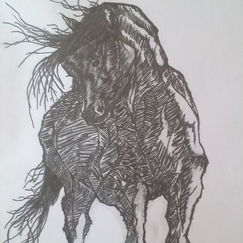 a running horse!, 17 x 12 inch, pawan  kumar,drawings,fine art drawings,paintings for dining room,paintings for living room,paintings for bedroom,paintings for office,paintings for bathroom,paintings for hotel,paintings for kitchen,paintings for school,thick paper,graphite pencil,17x12inch,GAL0631114661